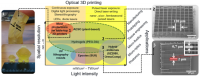 Optical 3D Micro- and Nano-formation of Bioplastics