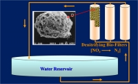Reduce Nitrate Levels in Water with Novel Biofilters